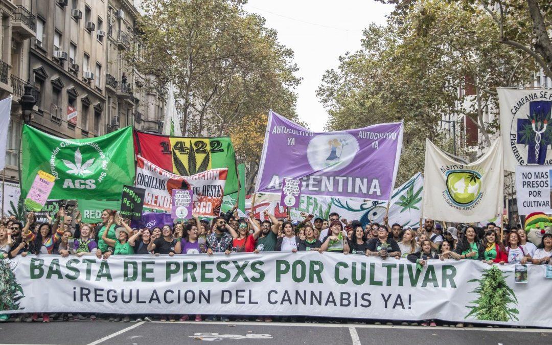 ¿De qué se trata el debate sobre la legalización de la marihuana?